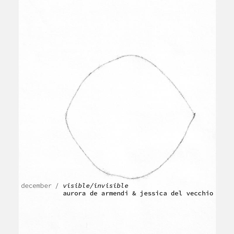 intermission museum of art, ima, nyc | john ros + rose van mierlo | december 2020 exhibition visible/invisible | aurora de armendi + jessica del vecchio